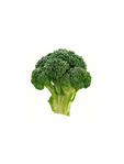 Broccoli Fresh Spain