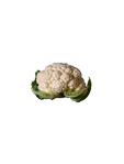 Cauliflower Fresh Local (large)