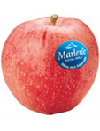 Apples Gala Marlene 2kg Pack