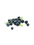 Berries Blue Fresh Premium Chile 125g