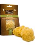 Aqua Massage Sea Sponge For Kids