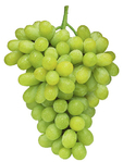 Grapes Thompson Seedless India 500g