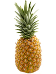Pineapple Puro Gusto Costa Rica Size 7 Offer
