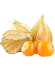 Physalis First Quality Colombia 100g